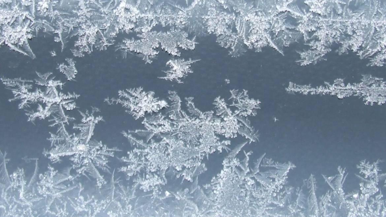 Die TOP 5 Tips gegen Erkältungen im Winter